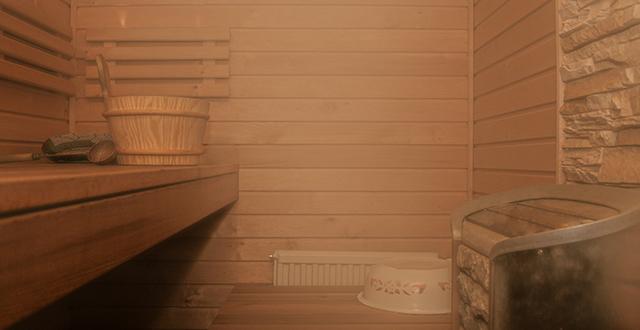vapori differenze infrasauna e sauna finlandese